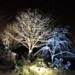Kallt och varmt ljus