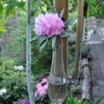 Hängande vas med Rhododendron