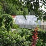 Växthuset i bakgrunden