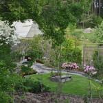 Magnolialunden med växthuset